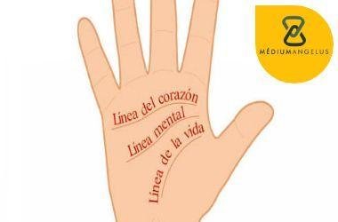 como leer la mano bien